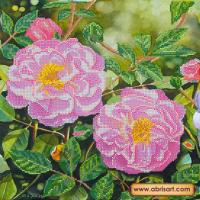 Абрис Арт АС-192 Плетистая роза. Рисунок на холсте
