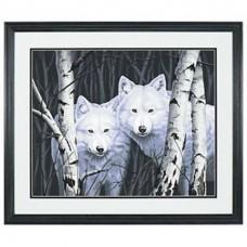 Dimensions 91094 Два белых волка между берез