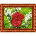 Каролинка КБЦ 4021 Роза в ромашках