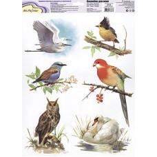 """Mr. Painter ОК-09 Наклейки для окон """"В мире птиц 1"""""""