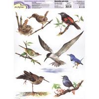 """Mr. Painter ОК-11 Наклейки для окон """"В мире птиц 3"""""""