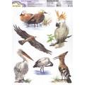 """Mr. Painter ОК-12 Наклейки для окон """"В мире птиц 4"""""""