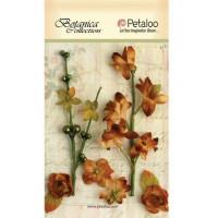 """Petaloo 1100-202 Набор цветов бумажных """"Floral Ephemera- Brown"""" (коричневый)"""