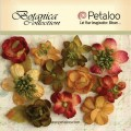 "Petaloo 1101-003 Набор цветов бумажных ""Botanica Minis - Granberr"" (Клюква, янтарь, оранжевый)"