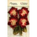 """Petaloo 1102-005 Набор цветов бумажных """"Botanica Blooms - All Red""""  (красный)"""
