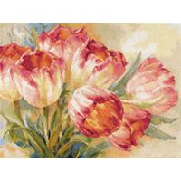 Алиса 2-29 Тюльпаны