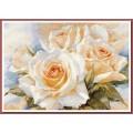 Алиса 2-32 Белые розы