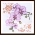 Alisena 1214 Орхидея -1