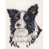 Anchor PCE141 Border Collie (Бордер колли)