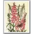 Anchor PCE936                    Flowering Foxgloves (Цветущие наперстянки)