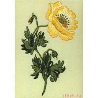 Anchor PE121 Oriental Poppy (Восточный мак)
