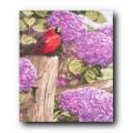 Bucilla 43734                     Crimson Splendor (Малиновое Величие)