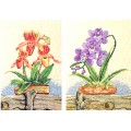 Bucilla 43735                     Orchid Duo (Дуэт орхидей)