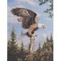 Bucilla 45478 Screaming Eagle (Кричащий орёл)