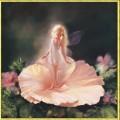 Candamar 51159                     La Fleur (Цветок)
