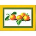Чаривна Мить Б-030 Апельсины
