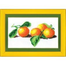 Набор для вышивания Б-030 Апельсины