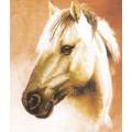 Чаривна Мить РК-007 Лошадь