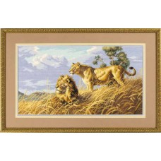 Dimensions 03866 African Lions (Африканские львы)