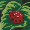 Dimensions 07170  Ladybug, Ladybug...(Божья коровка)