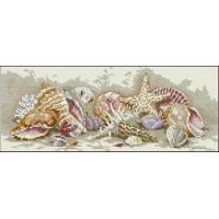 Dimensions 65035 Seashell Treasures (Сокровища - морские ракушки)