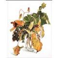Fujico 601 Wild Grapes (Дикий виноград)