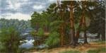 Hobby&Pro А653 Лесное озеро
