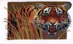 Hobby&Pro А654 Тигр на охоте