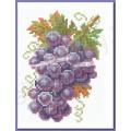 Искусница 513 Виноград