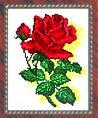 Искусница 516                       Алая роза