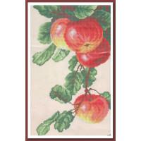 Искусница 556 Спелые яблоки