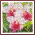 Искусница ББ-010 Орхидея