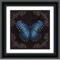Кларт 8-112  Голубая бабочка