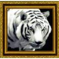 Kustom Krafts DAW-002                   Белый Тигр