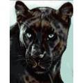 Kustom Krafts JW-001 Черная пантера