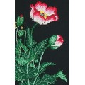 Maia 5678000-05032 Oriental Poppy (Восточный мак)