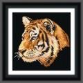 МП Студия НВ-077 Тигр