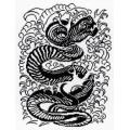 МП Студия НВ-158 Змея. Графика