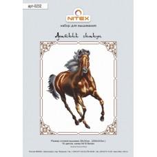 Набор для вышивания 0232 Арабский скакун