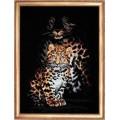 Овен 342 Леопарды
