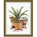 Овен 398 Декоративные пальмы 1