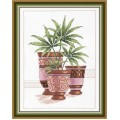 Овен 399 Декоративные пальмы 2