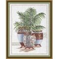 Овен 400 Декоративные пальмы 3