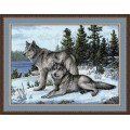 Овен 567 Волки