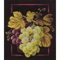 Panna Н-1064 Виноградная лоза