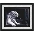 Panna Ж-0277 Белый тигр