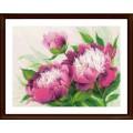 Риолис 100/039 Розовые пионы