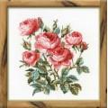 Риолис 1046 Садовые розы