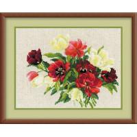 Риолис 1065 Тюльпаны