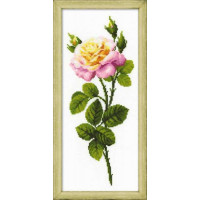 Риолис 1331 Дивныйцветок
